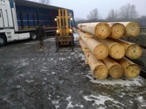 Nagy átmérőjű esztergáét rönkfa